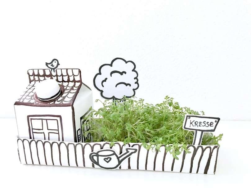 Papphaus mit Garten16