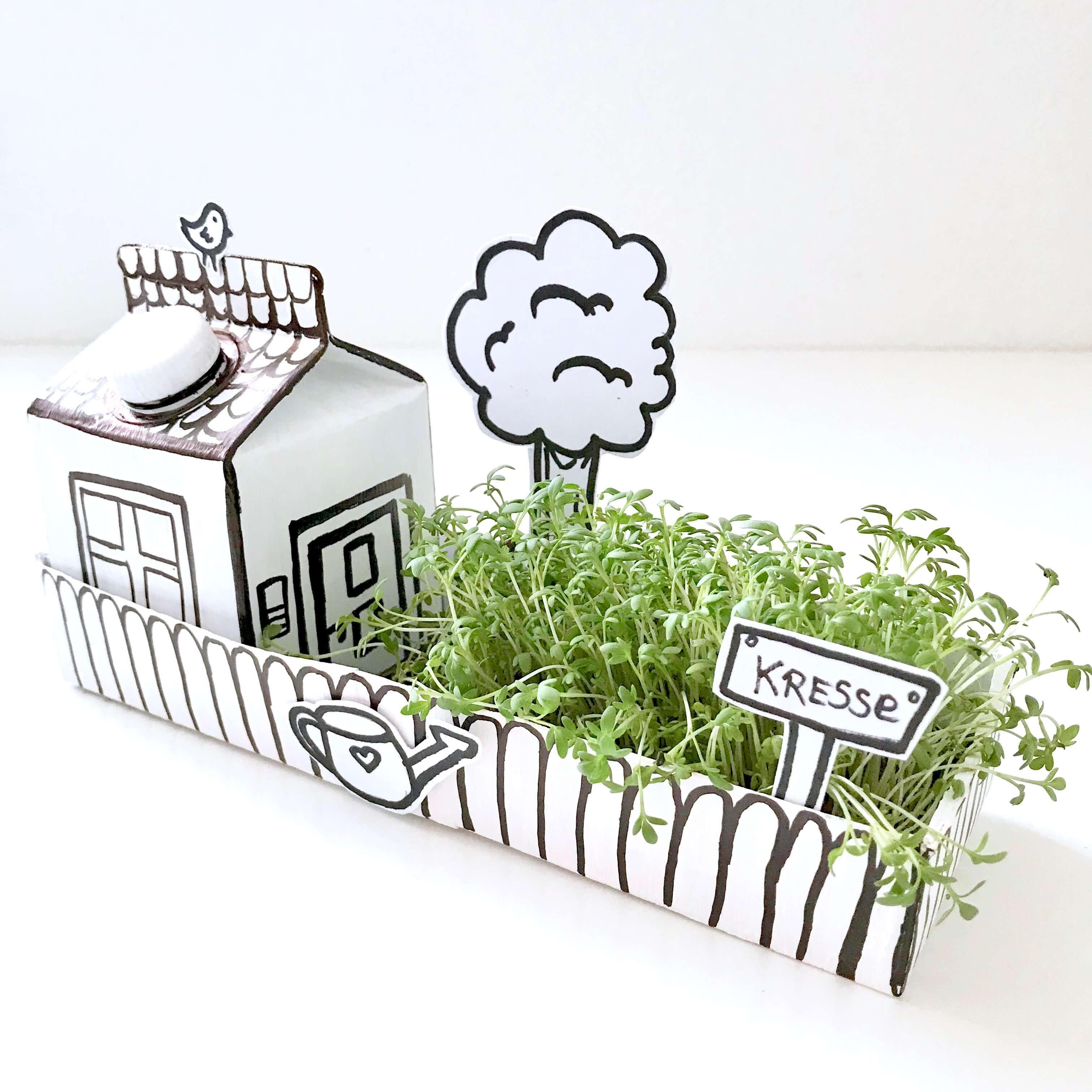 Papphaus mit Garten23